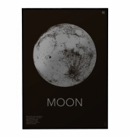 plakat Moon dark